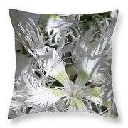 Dianthus Superbus - White Throw Pillow