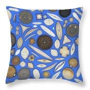 Diatoms Throw Pillow by Kent Wood