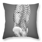 Digestive System And Bones Throw Pillow