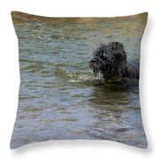 Dog Ball Water Throw Pillow