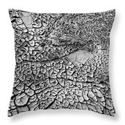 Dried Mud Pan It Time Of Drought Throw Pillow by Alexandr  Malyshev