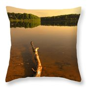 Drift Wood Throw Pillow
