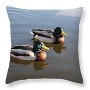 Ducks On Water Throw Pillow