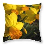 Dwarf Cyclamineus Daffodil Named Jet Fire Throw Pillow