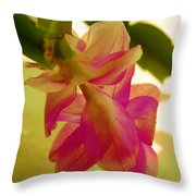 Easter Cactus Throw Pillow