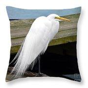 Elegant Egret Throw Pillow