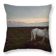 Evening In New Forest Throw Pillow