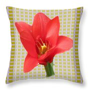 Exotic Red Tulip In Bold And Two Border Patterns Tiny Sparkle Parallal Horizontal Strips Summer Flow Throw Pillow