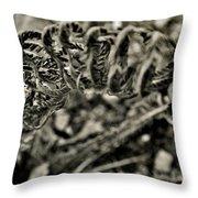 Fall 2013 Throw Pillow