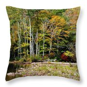 Fall Color River Throw Pillow by Thomas R Fletcher