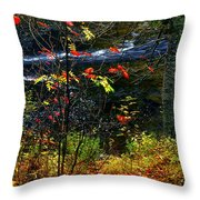 Fall Forest And River Throw Pillow