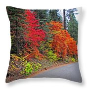 Fall's Splendor Throw Pillow