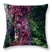 Fanticy In Reality Throw Pillow