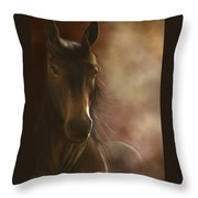 Feeling The Warmth Throw Pillow by Kate Black