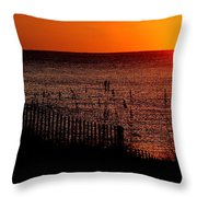 Fence And The Sun Throw Pillow