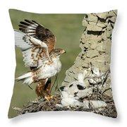 Ferruginous Hawk And Chicks Throw Pillow