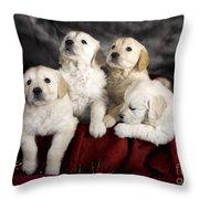 Festive Puppies Throw Pillow by Angel  Tarantella