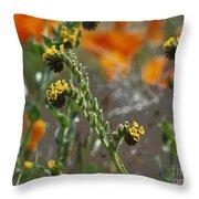 Fiddleneck Flowers Throw Pillow
