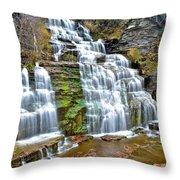 Finger Lakes Waterfall Throw Pillow