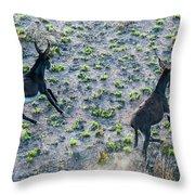 Fish River Protected Area, Australia Throw Pillow