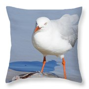 Fishy Find Throw Pillow