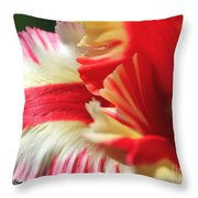 Flaming Parrot Tulip Throw Pillow