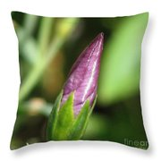 Flax From The Charmer Mixture Throw Pillow