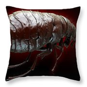 Flea Pulex Irritans Throw Pillow