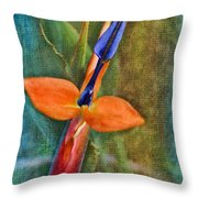 Floral Contentment Throw Pillow