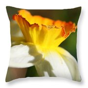 Floral Cup  Throw Pillow