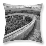Florida Everglades Throw Pillow