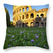 Flowers At The Coliseum Throw Pillow