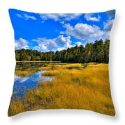 Fly Pond In The Adirondacks Throw Pillow by David Patterson