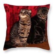 2 Folds Throw Pillow