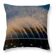 Fountain 2 Throw Pillow