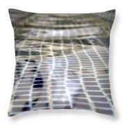 Fountain Water Throw Pillow