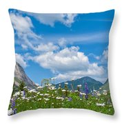 Franconia Notch - Lupine And Daiseys  Throw Pillow