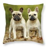 French Bulldogs Throw Pillow