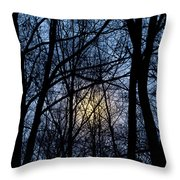 Frosted Winter Moon Throw Pillow