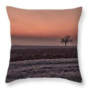 Frozen Time Throw Pillow