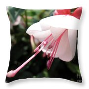 Fuchsia Named Liebelei Throw Pillow