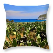 Genoveses Beach Throw Pillow