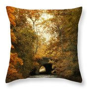 Gentle Reflections Throw Pillow
