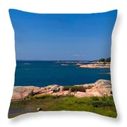 Georgian Bay Coastline Throw Pillow