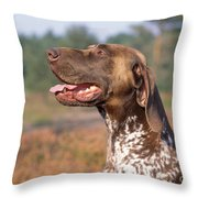 German Short-haired Pointer Dog Throw Pillow