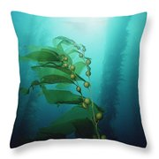 Giant Kelp Macrocystis Pyrifera Forest Throw Pillow