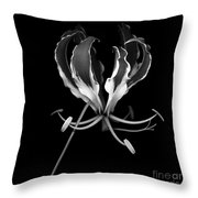 Glory Lily Throw Pillow