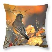 Glowing Robin Throw Pillow