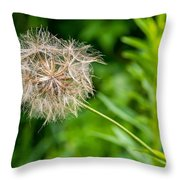 Goat's Beard Throw Pillow