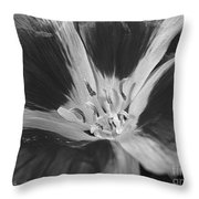 Godetia Named Lilac Rose Throw Pillow